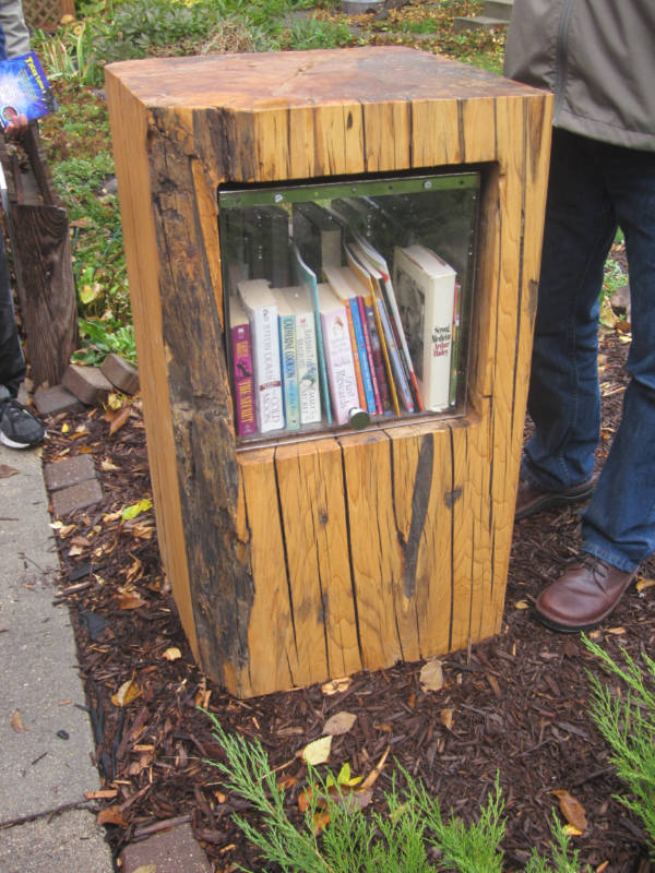 Little Free Library contained within the stump of an elm tree